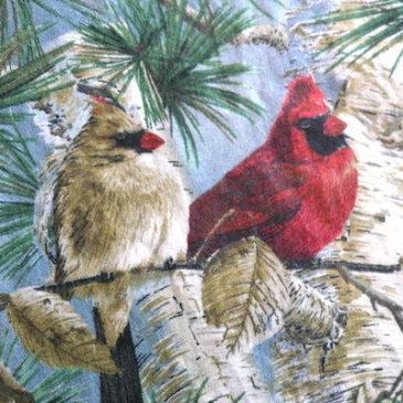 70's birds printed apron dress
